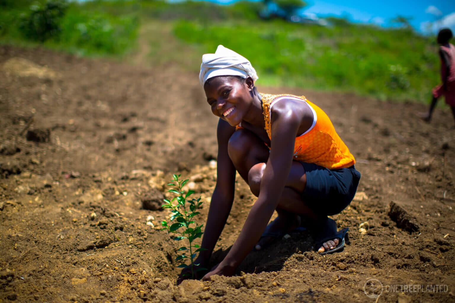 Frau pflanzt Baum